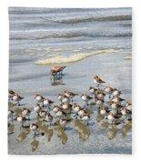 Sandpiper Reflections Fleece Blanket