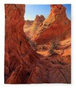 Sandstone Window Fleece Blanket