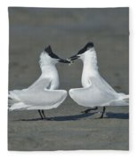 Sandwich Terns Fleece Blanket