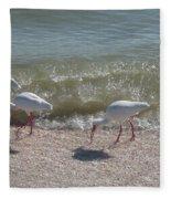 Sanibel Ibis Fleece Blanket
