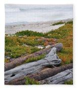Santa Monica Mountains County Line Beach Fleece Blanket