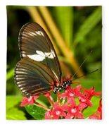 Sapho Longwing Butterfly Fleece Blanket
