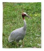 Sarus Crane Fleece Blanket