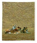 Savannah Queens Fleece Blanket