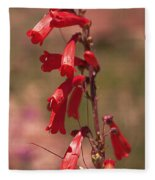 Scarlet Colorado Penstemons Fleece Blanket