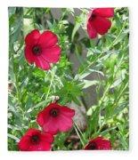 Scarlet Flax Fleece Blanket