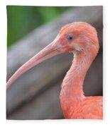 Scarlet Ibis 1 Fleece Blanket