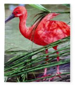 Scarlet Ibis Fleece Blanket