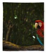 Scarlet Macaw Profile Fleece Blanket