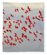 Scarlet Sky Fleece Blanket