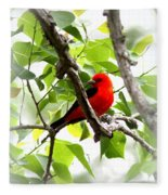 Scarlet Tanager - 19 Fleece Blanket