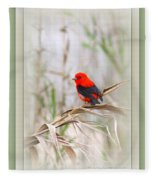 Scarlet Tanager 3630-10-ttp Fleece Blanket