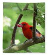 Scarlet Tanager - Fallout Fleece Blanket