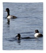 Scaup Ducks In The Spring Fleece Blanket