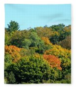 Scenic Minnesota 5 Fleece Blanket