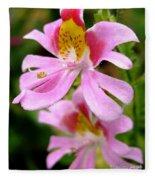 Schizanthus Named Angel Wings Fleece Blanket