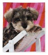 Schnauzer Puppy Looking Over Top Fleece Blanket