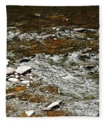 Schoharie Creek Lexington New York Catskill Mountains Fleece Blanket
