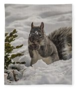 Sciurus Griseus Fleece Blanket