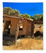 Scorpion Ranch Remnants Fleece Blanket