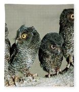 Screech Owl Chicks Fleece Blanket