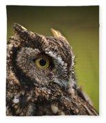 Screech Owl 1 Fleece Blanket