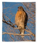 Screeching Red-shouldered Hawk Fleece Blanket