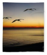 Sea Cruisers Fleece Blanket