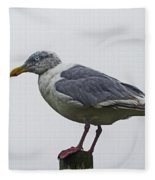 Sea Gull On The Dock On A Foggy Day Fleece Blanket