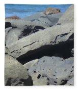 Sea Life 3 Fleece Blanket