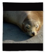 Sea Lion-00178 Fleece Blanket