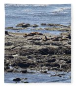 Sea Lion Resort Fleece Blanket