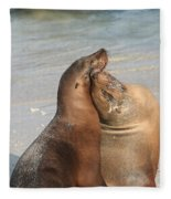 Sea Lions In Love Fleece Blanket