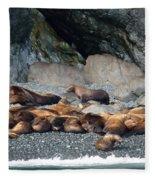 Sea Lions On The Sea Shore Fleece Blanket