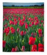 Sea Of Red Tulips Fleece Blanket