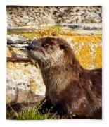 Sea Otter Fleece Blanket