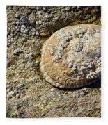 Sea Shell Rock Fleece Blanket