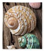Sea Shells With Urchin  Fleece Blanket