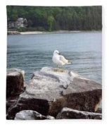 Seagull Awaits Fleece Blanket
