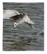 Seagull Dive Fleece Blanket