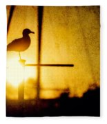 Seagull In Harbor Sunset Fleece Blanket