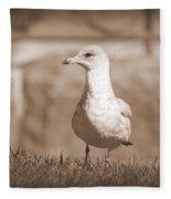 Seagull In Sephia Fleece Blanket
