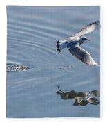 Seagull Reflection Fleece Blanket