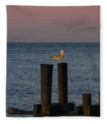 Seagull Seascape Fleece Blanket