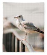 Seagull Standing On Rail Fleece Blanket