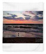 Seagull With Sunset Fleece Blanket