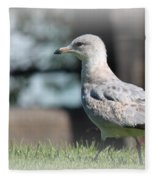 Seagulls 1 Fleece Blanket