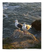 Seagulls Aka Pismo Poopers Fleece Blanket