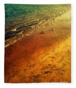 Seagulls At Sunset Fleece Blanket