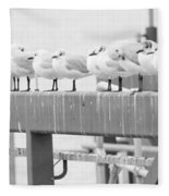 Seagulls In A Row Fleece Blanket